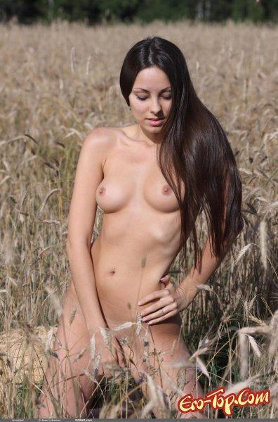 Девушка во ржи  Эротика. Смотреть фото красивых голых девушек бесплатно