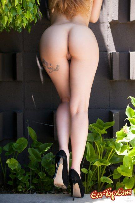 Подборка поп   Эротика. Смотреть фото красивых голых девушек бесплатно
