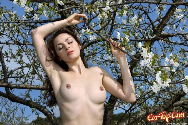 Фото эротика на природе. Красивая голая девушка среди яблонь.